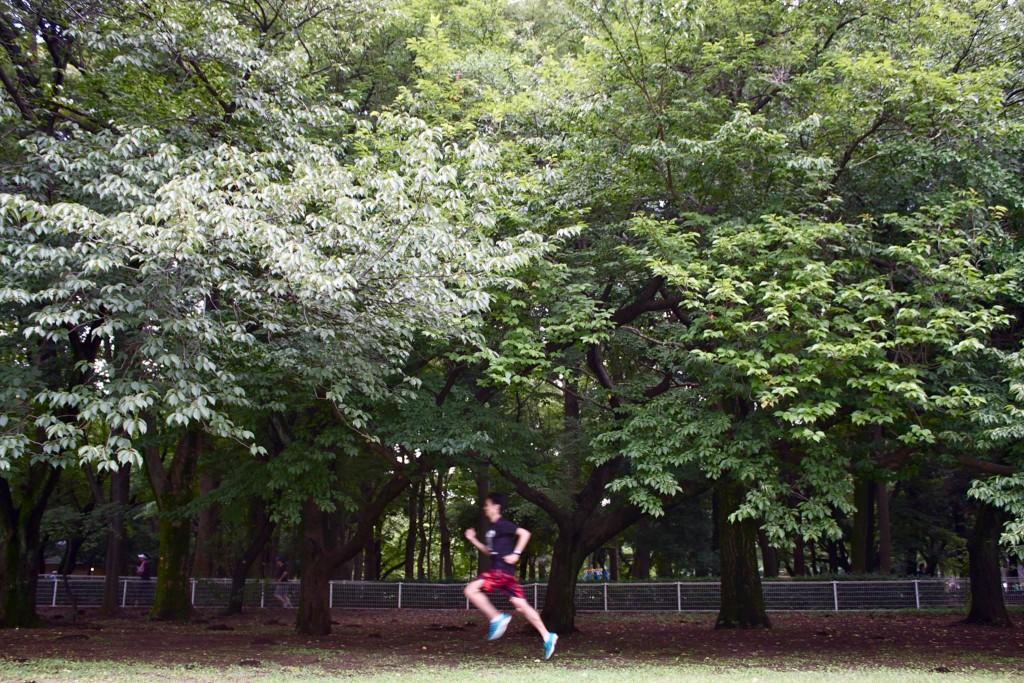 八木勇樹の画像 p1_21