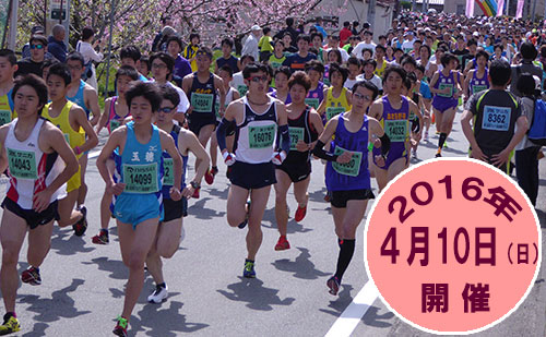「第14回 南アルプス桃源郷マラソン大会」の画像