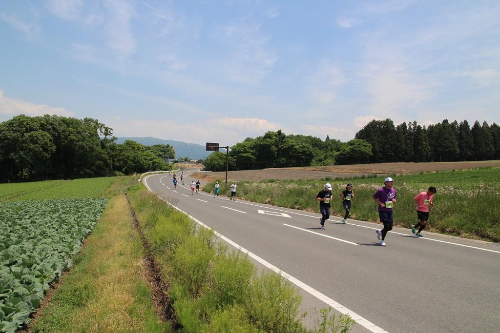 「第2回 やさい王国昭和村河岸段丘ハーフマラソン」の画像