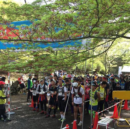 「第10回 京都一周トレイルラン2016 東山コース」の画像