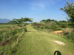 「コース2」の画像