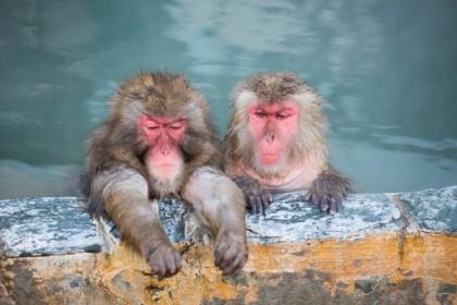 「走った後の温泉がたまらない!「風呂ラン」の恐るべき4つの魅力」の画像