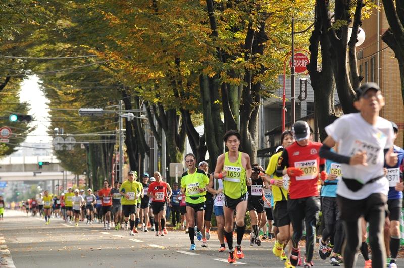 「世界陸上の代表選考も兼ねたレース! 第2回さいたま国際マラソン」の画像