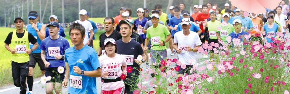「参加賞で新米コシヒカリがもらえる! 第15回越後湯沢秋桜ハーフマラソン」の画像