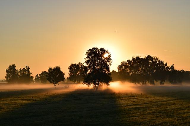 「動き始めに、まずはウォーキング。朝やるメリ・デメリ&夜やるメリ・デメリ」の画像
