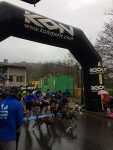 「犬と一緒に走るトライアルレース!! 10.8kmの優勝タイムは37:51」の画像