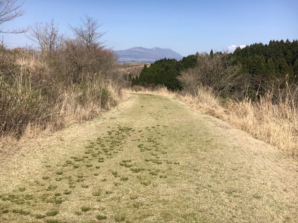 「最高の景色が堪能できる阿蘇クロスカントリーコースなど、熊本のランスポットとご当地グルメを紹介」の画像