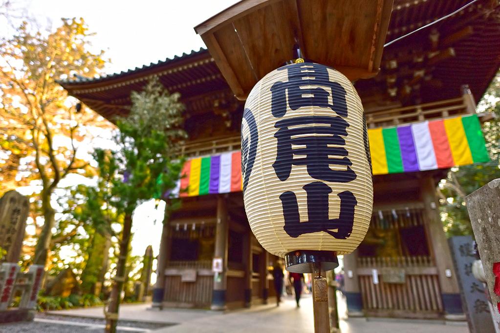 「東京から日帰りアクセスできる爽快トレランコース特集 週末はトレイルへ!!」の画像