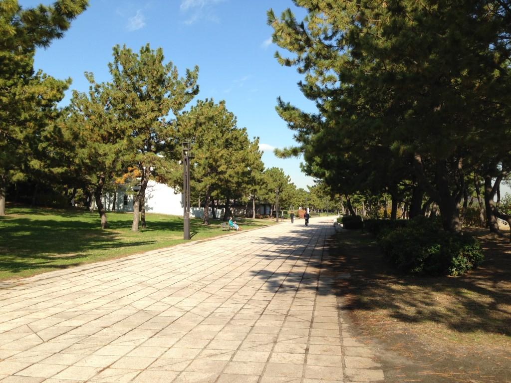「夏の八景島を走ろう!新たな横浜の風物詩「横浜ビーチマラソン」が7月23日に開催へ」の画像