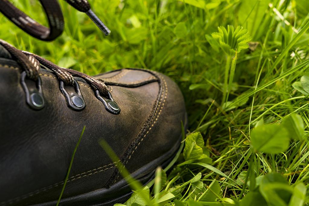 「トレランを100%楽しむための1足、ALTRAの「スペリオール3.0」」の画像