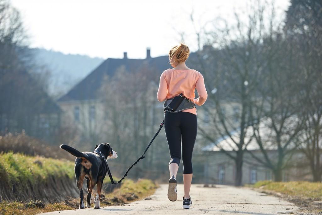 「愛犬と走るスポーツの秋! ドイツの「HUNTER」よりジョギングリードが登場」の画像