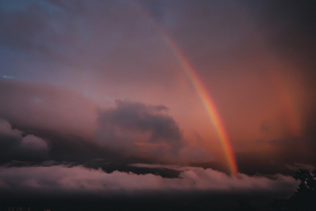 「「すれ違い時、待つときは山側で」、トレラン時の気をつけたいポイント11」の画像