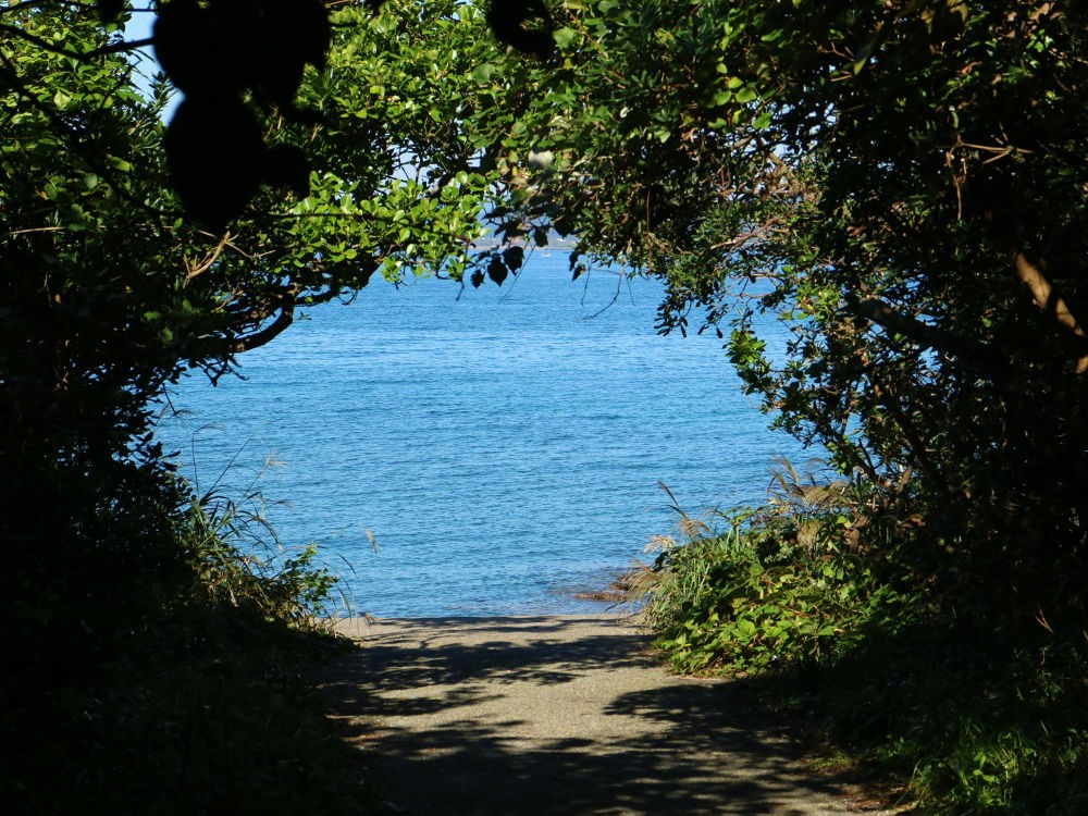 「この夏にオススメ!輝く海を眺めながら走るシーサイドランニングコースまとめ」の画像