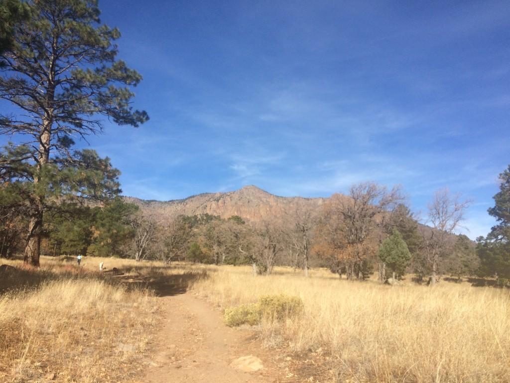 「セドナに行くつもりがフラッグスタッフを走っていた話。アリゾナ州でのラントリップ 」の画像