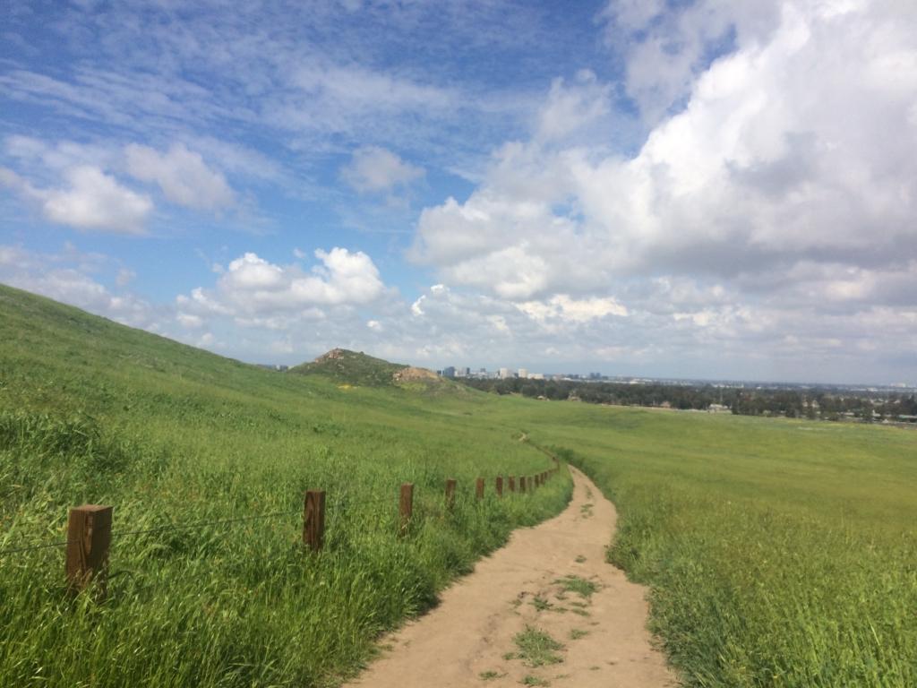 「山から海へと続くトレイル。南カリフォルニアのトレイルランは春に限る」の画像