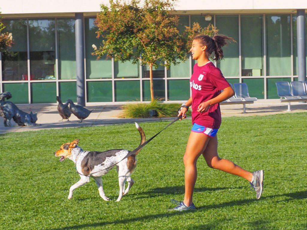 「「毎日走らなくてもいい。速く、長くも」海外のランニング文化に触れる#2【アメリカ】」の画像