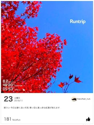 「2012本のコースから選んだ「Best of Runtrip」は?」の画像