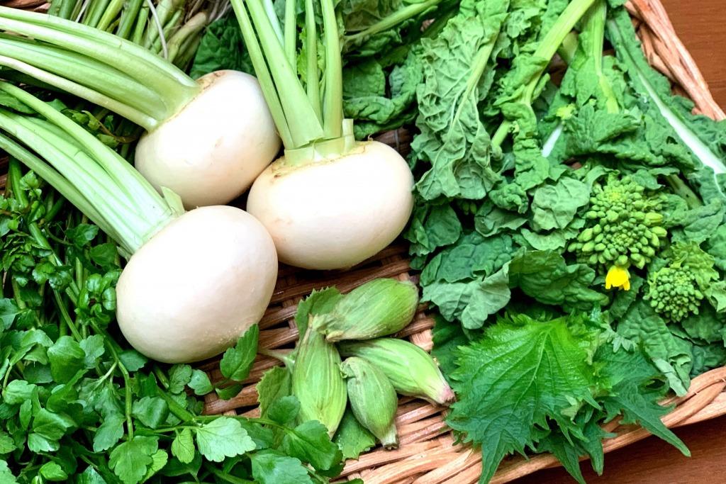 「ランナーのデトックスに『苦味野菜』『あずき』。シェイプアップにも◎」の画像